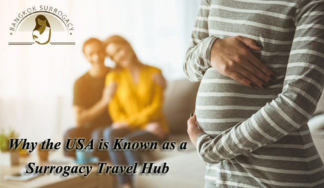 Surrogacy Travel Hub